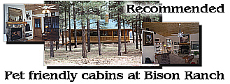 Mogollon Resort Cabins.jpg