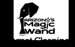 AZ Magic Wand.jpg