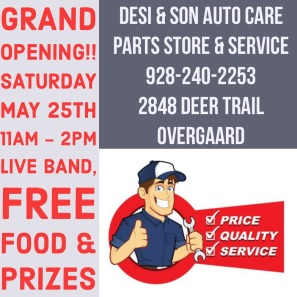 Desi and Sons Flyer