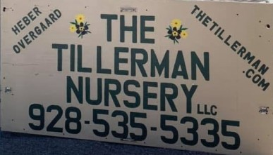 Tillerman Nursey Photo (2)